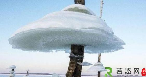 """俄罗斯干干净净的水库 一夜之间突然出现""""冰蘑菇"""""""