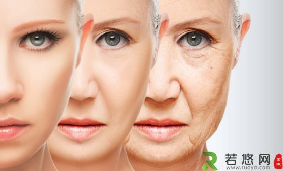 如何延缓肌肤衰老 食物美容远离肌肤衰老