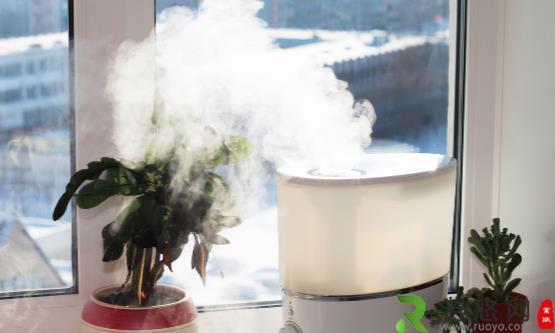 冬季使用加湿器需要注意些什么 加湿器应如何科学保养